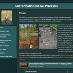 Soil Processes